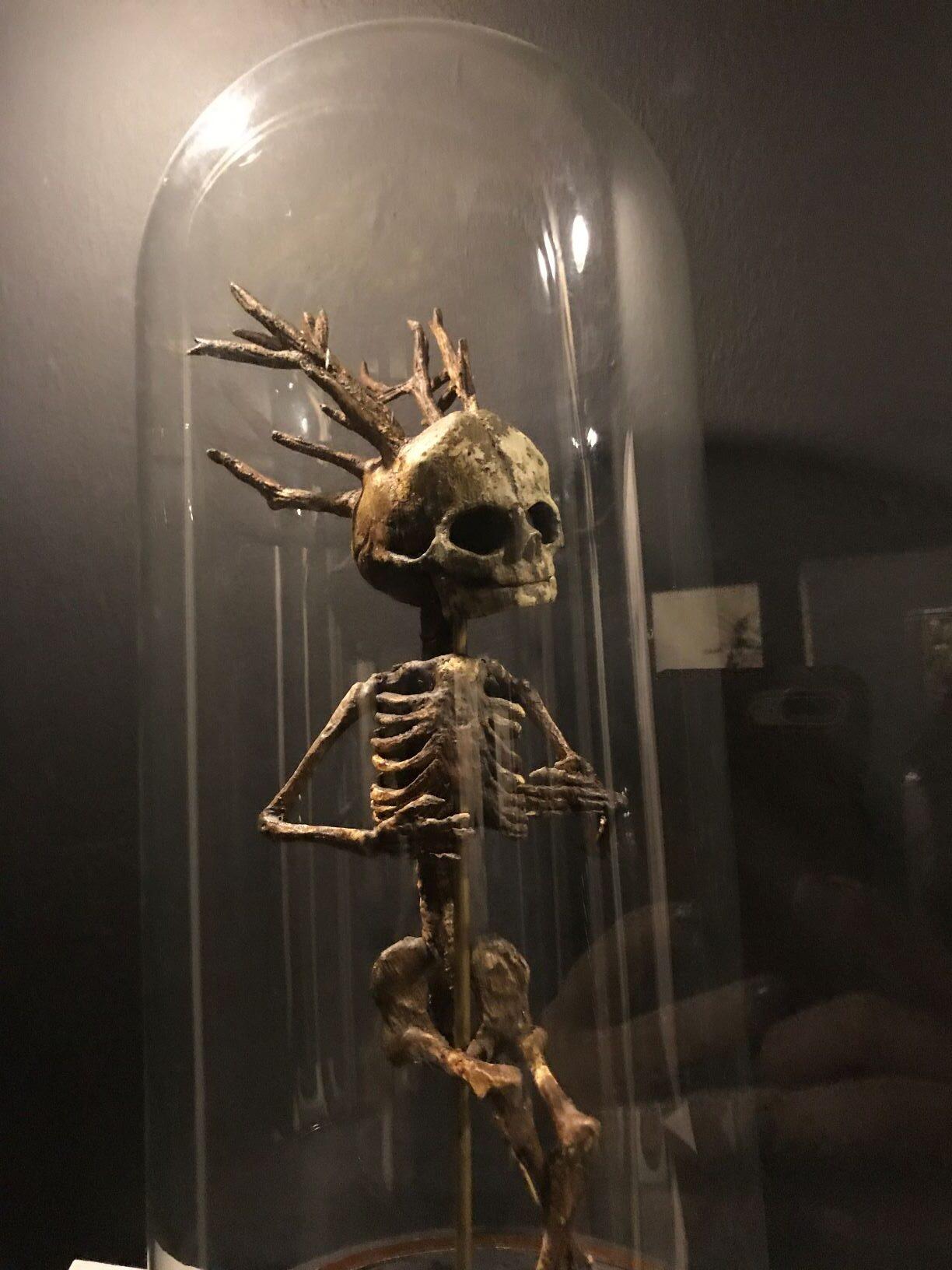 Skovbarnet med gevæksterne på kraniet