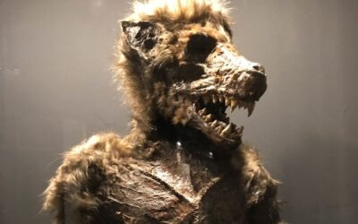Vampires and Werewolves in Nykøbing Falster